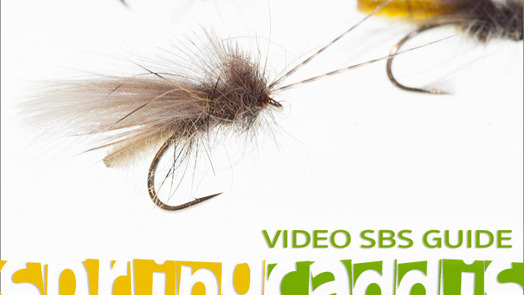 Step-by-Step Detached Body Caddis