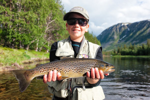 Brown trout flyfishing