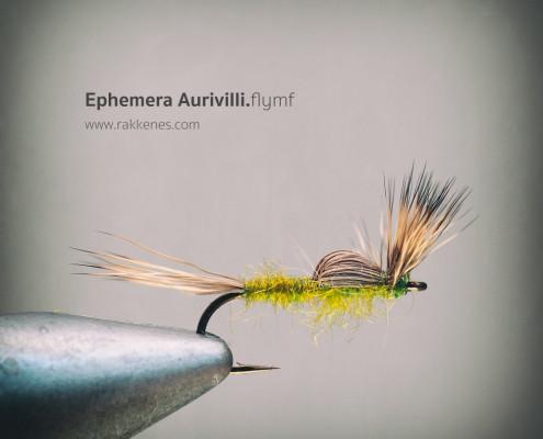 Aurivilli BWO Flymf