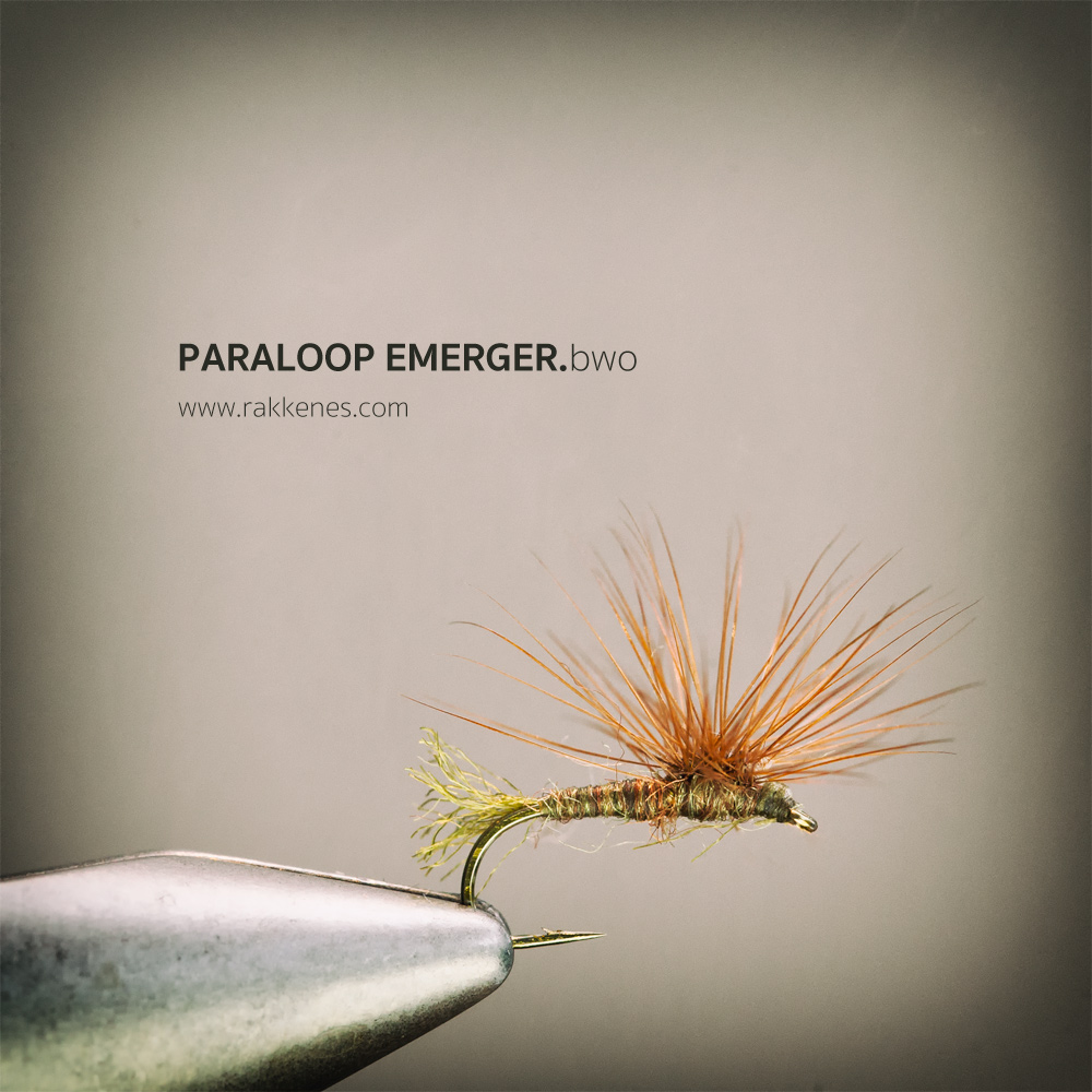 Paraloop BWO Emerger