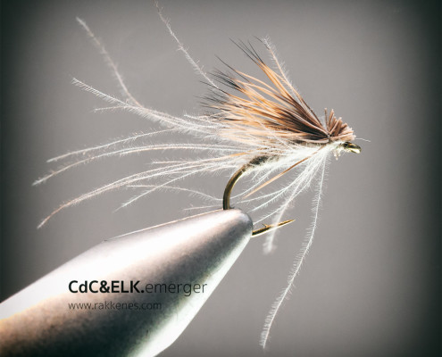 CdC and Elk Emerger