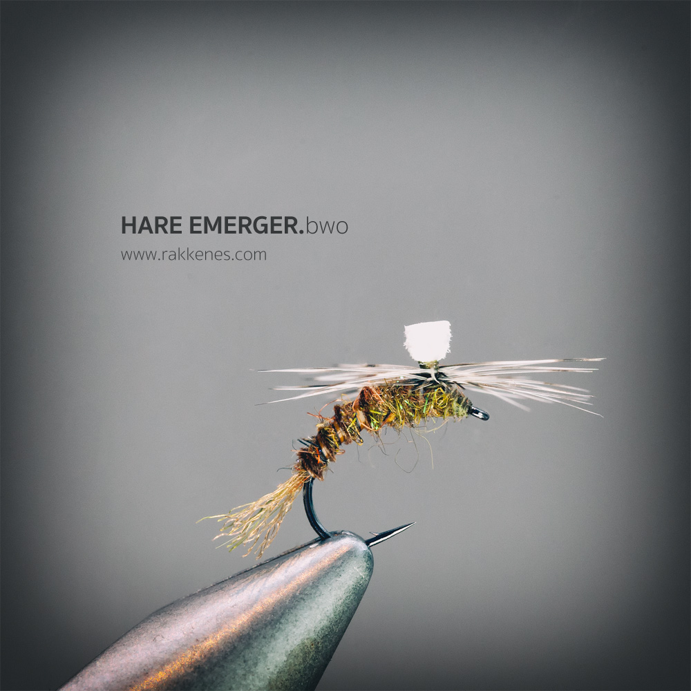 The Hare BWO Emerger