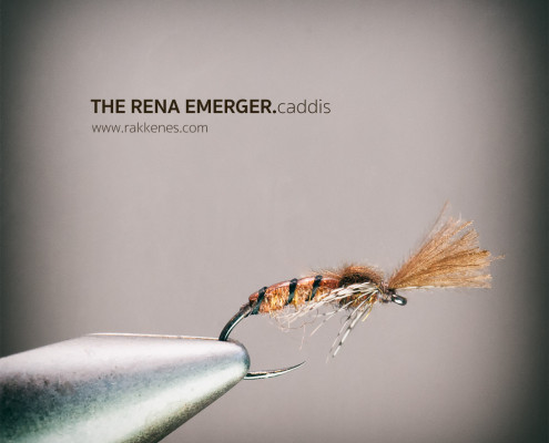 Rena Caddis Emerger