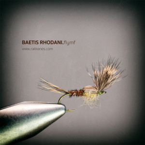 Baetis Flymph Emerger