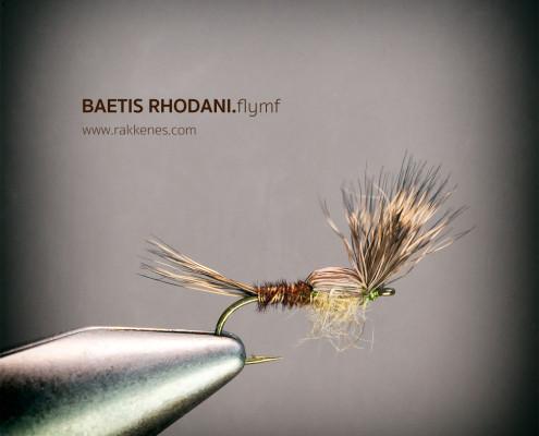 Baetis Flymph Emerger
