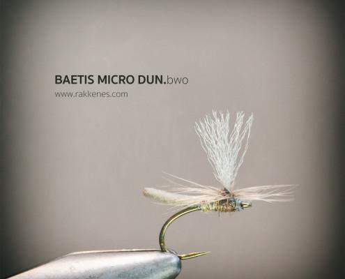 Baetis Micro Dun