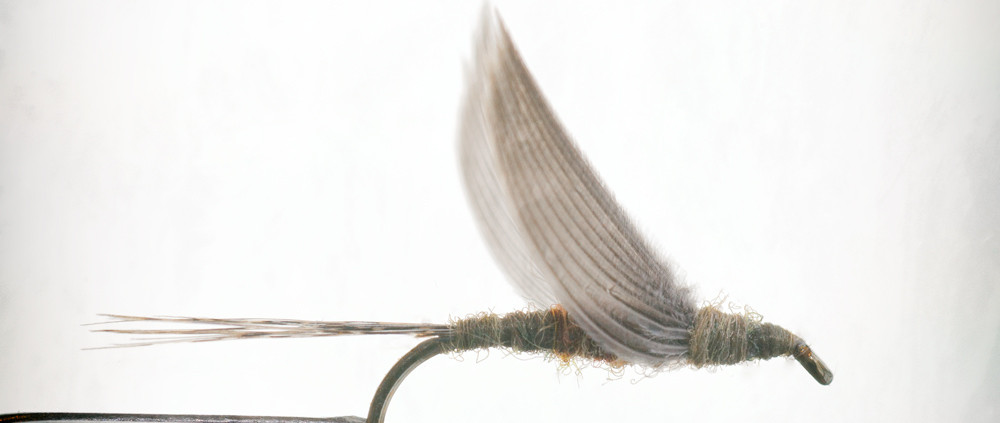 Five Principles for tying a BWO Dun