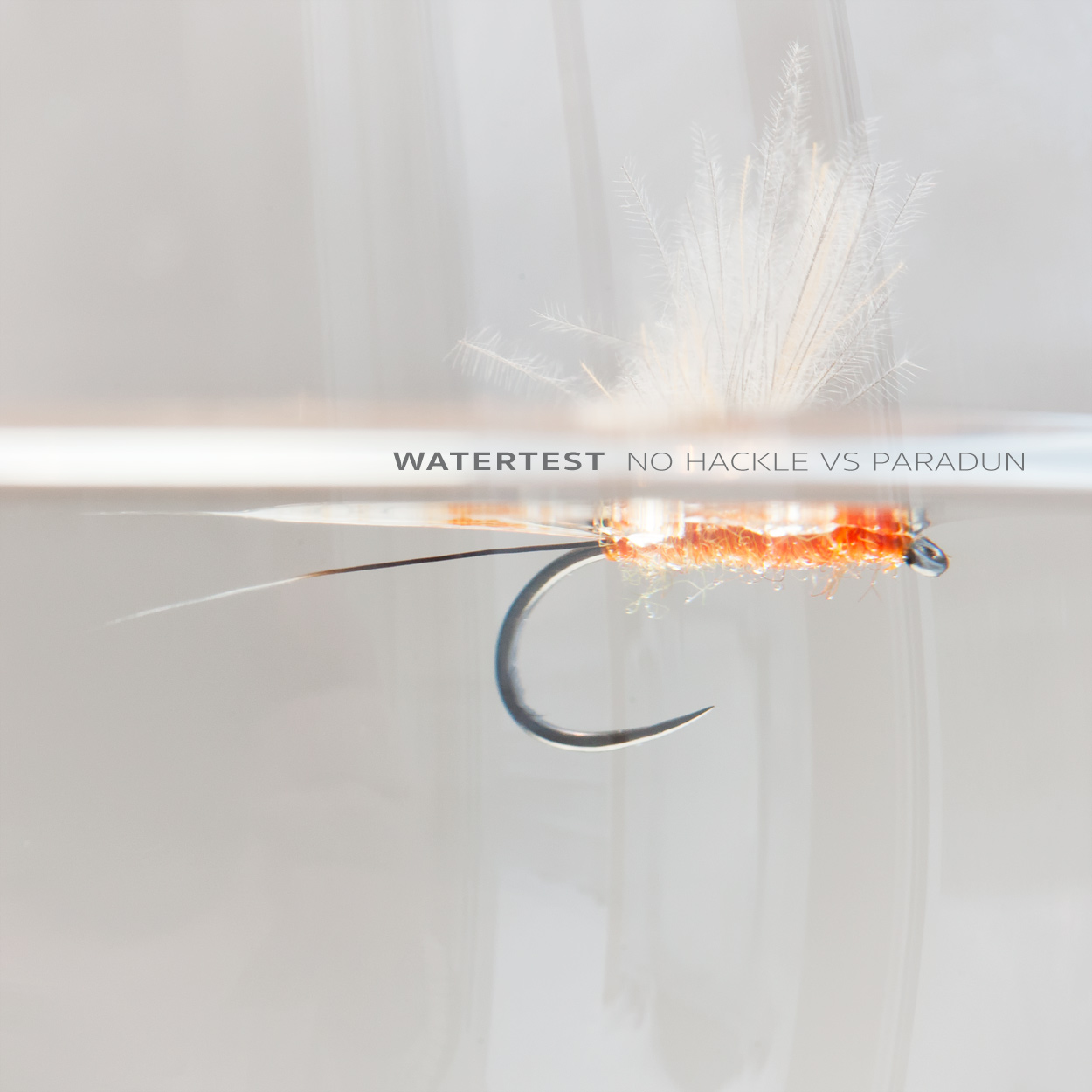 Perfect mayfly dun profile