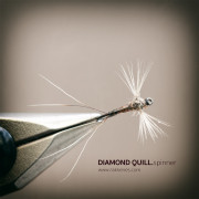 THE DIAMOND QUILL SPINNER