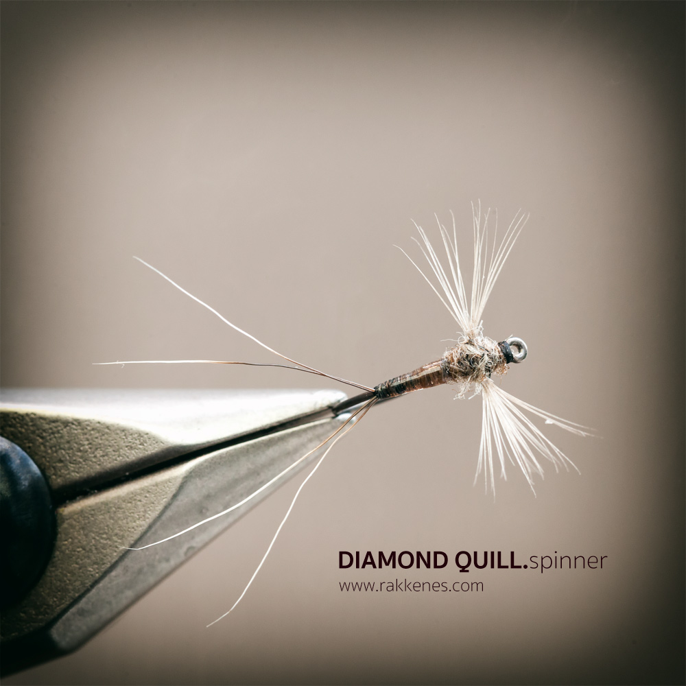 Spent Spinner - Diamond Quill