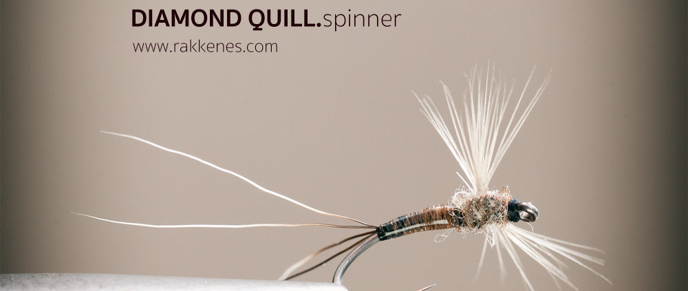 Curved Quill Spinner
