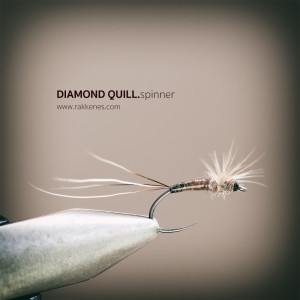 Spent Spinner Diamond Quill