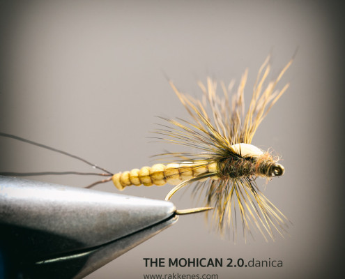 The Mohican Mayfly