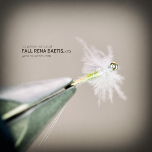 Small Fall Baetis