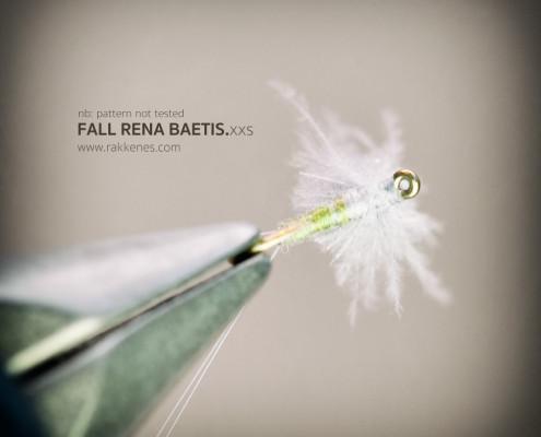Small Fall Baetis