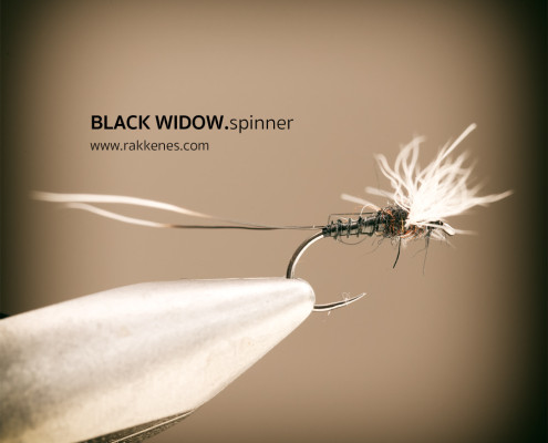 Spent Spinner Black Widow