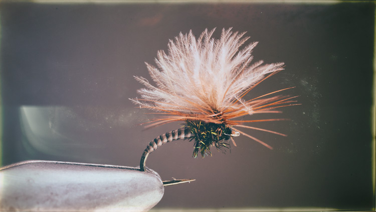 Puff Wing Midge Buzzer
