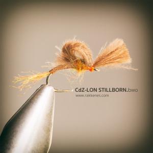 CdC Z Lon BWO stillborn cripple