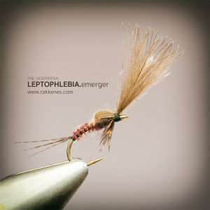 Leptophlebia Vespertina Emerger