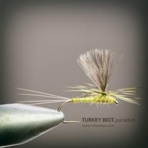 Turkey Biot BWO