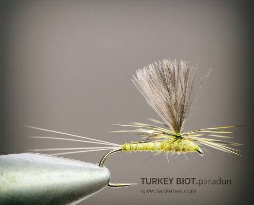 Turkey Biot BWO