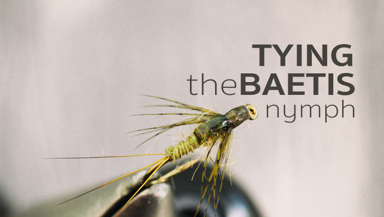 Tying Baetis Nymph