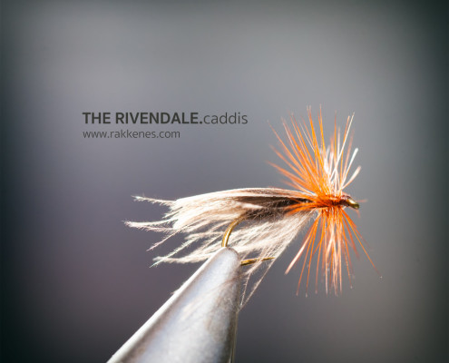Europea Caddis variant with CdC