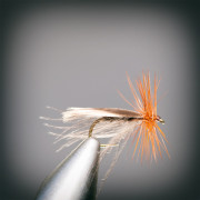 THE RIVENDALE CADDIS