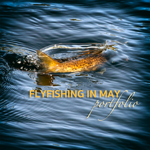 Flyfishing in May