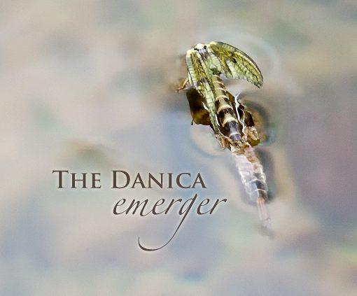 Danica Emerger