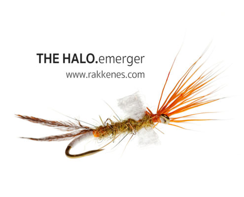 Mayfly Halo Emerger