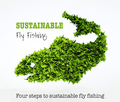 Sustainable Fly Fishing