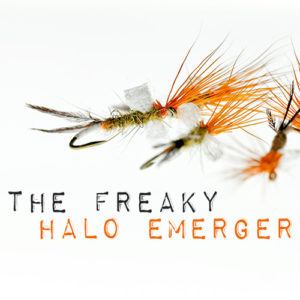 Halo Mayfly Emerger