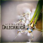 Heptagenia Dalecarlica