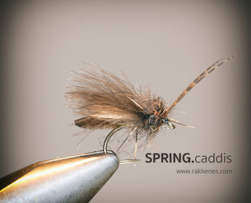 Detached Body Caddis