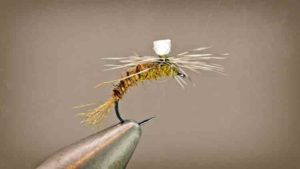 Hare BWO Emerger