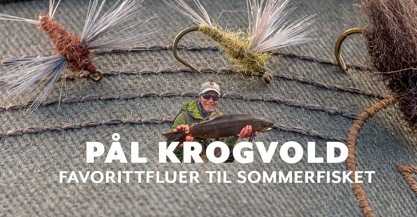 Pål Krogvold
