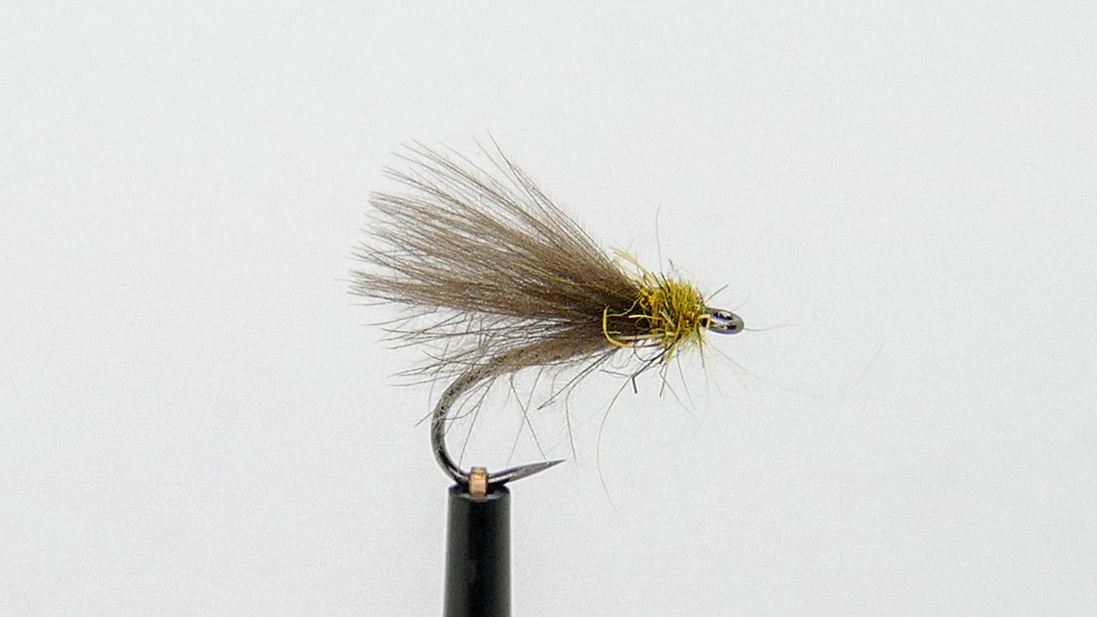 Roy Ole Læhren Jakobsen f-fly
