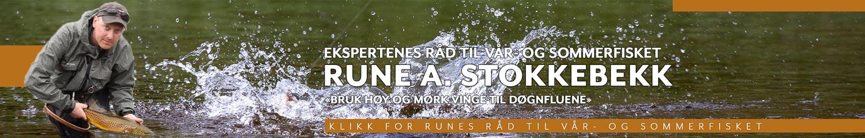 Rune Stokkebekk